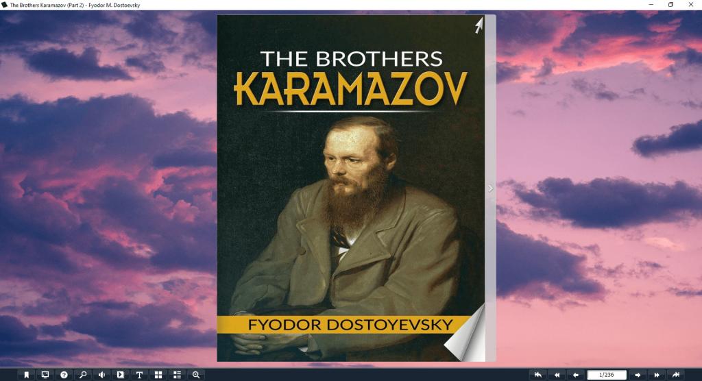 Summary Of The Brothers Karamazov Part 2 Of The Book Flip-Image-1