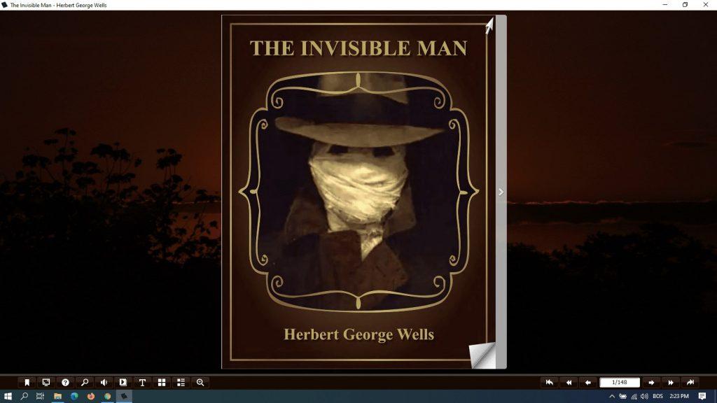 the invisible man pdf summary